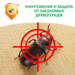 Уничтожение и защита от насекомых древоточцев